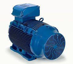 elektromotor WEG W22