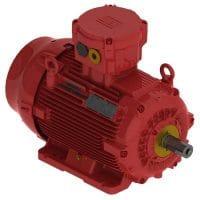 elektromotor WEG W22X