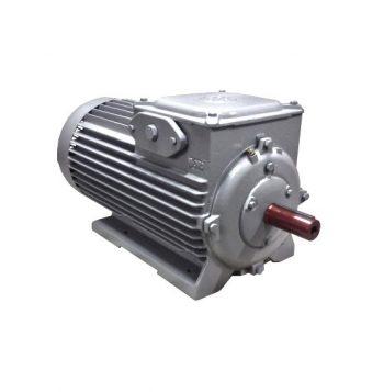kroužkový elektromotor