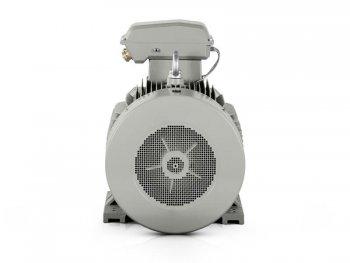 elektromotor 132kW 3LC 315M-2