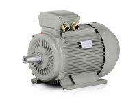 elektromotor 55kW 1LC 250M-4